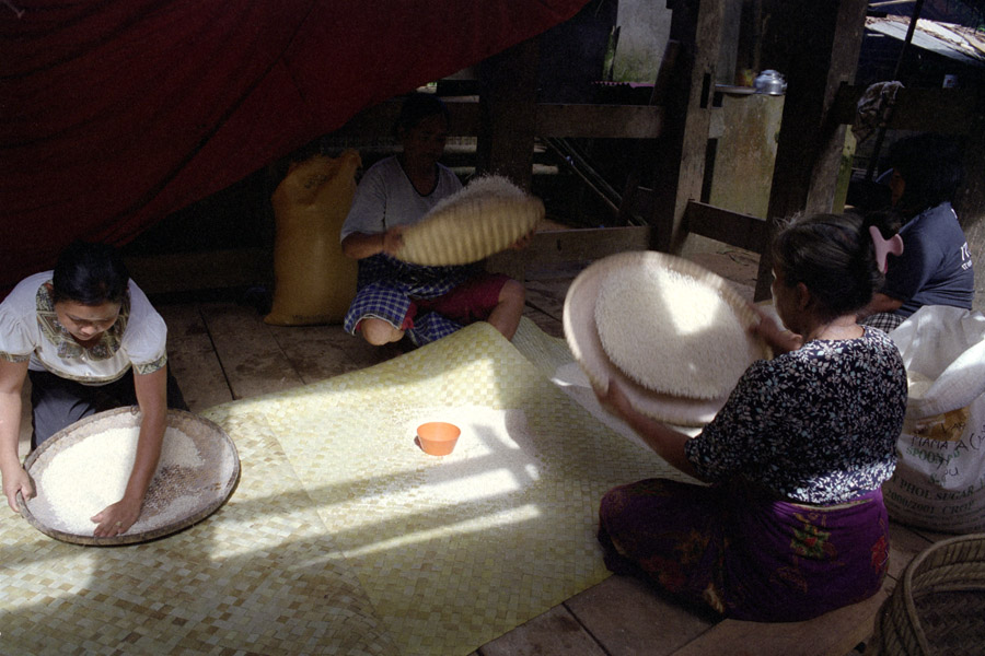 Parinding, Sulawesi, Indonesia 2010: winnowing rice for guests to eat during a funeral.