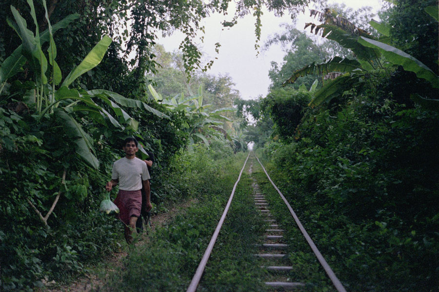 Battambang, Cambodia 2012: the remains of the bamboo train, a system running on a single track, with carts designed to be disassembled in order to let one or the other pass.